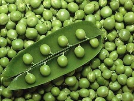 Гарвардские ученые назвали три овоща, которые мешают похудеть