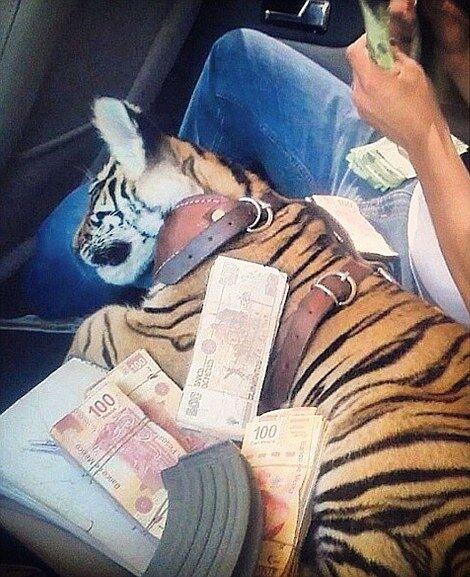 Члены мексиканских наркокартелей хвастаются роскошной жизнью в Instagram: опубликованы фото