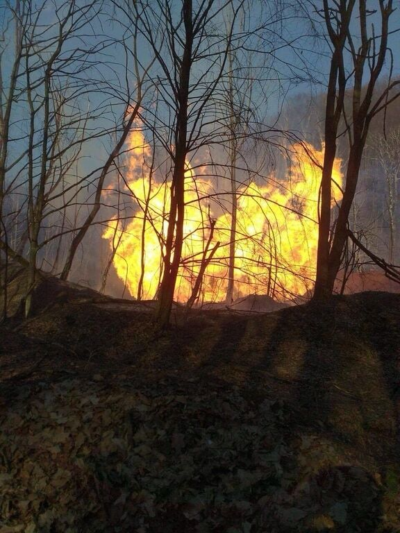 На Закарпатті вибухнув газопровід: стовп вогню піднімався на 50 м