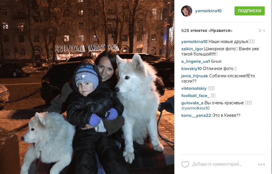 Пушистые красавицы. Жена Ярмоленко похвасталась новыми друзьями семьи