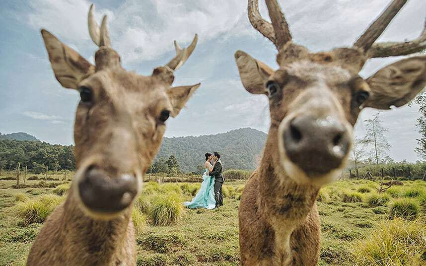 Счастье молодым: опубликованы смешные свадебные фото со всего мира
