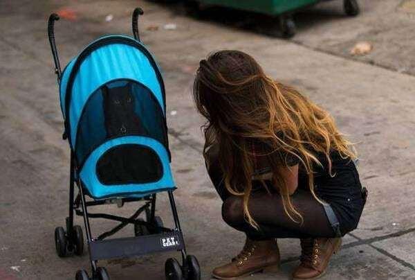 """Опубликованы смешные фото о """"сильных и независимых"""" женщинах"""