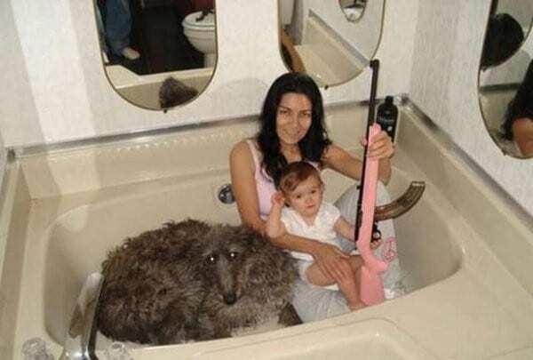 Опубликованы смешные фото, на которых происходят странные вещи