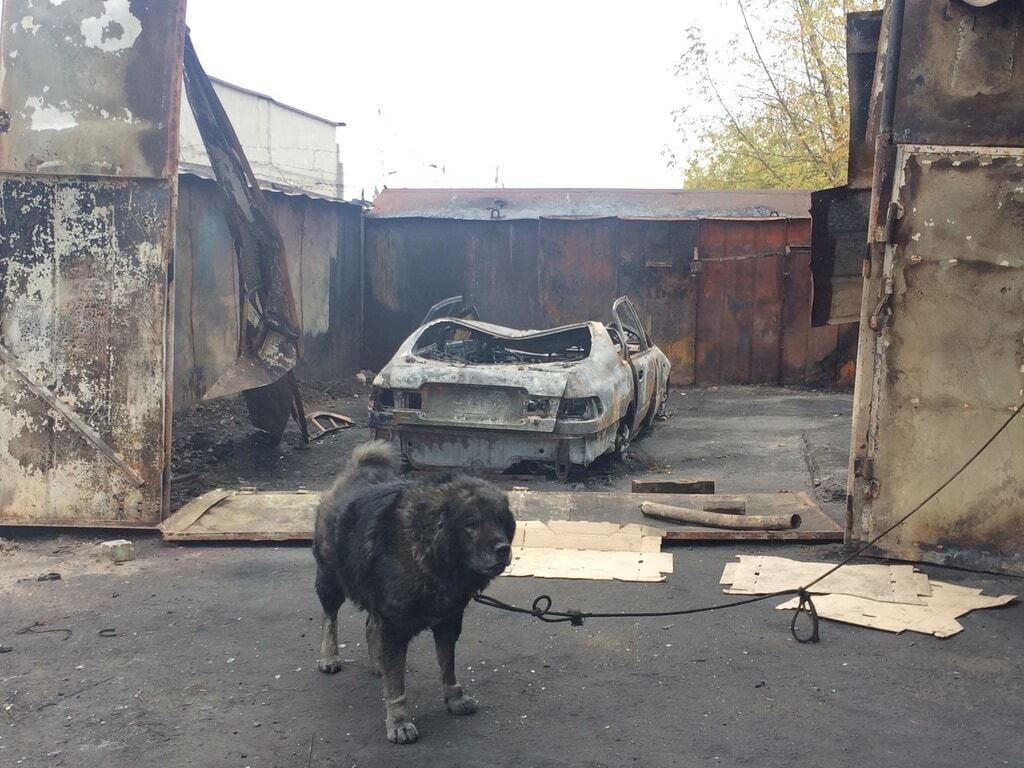 В Запорожье сожгли шиномонтаж и два авто
