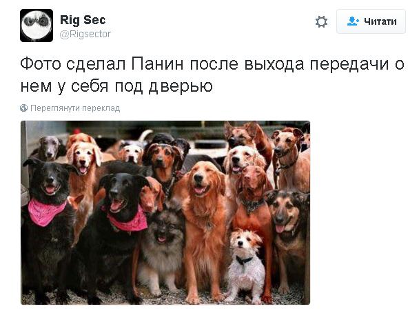 Любимый актер Путина снялся в скандальном видео с собакой: видеофакт