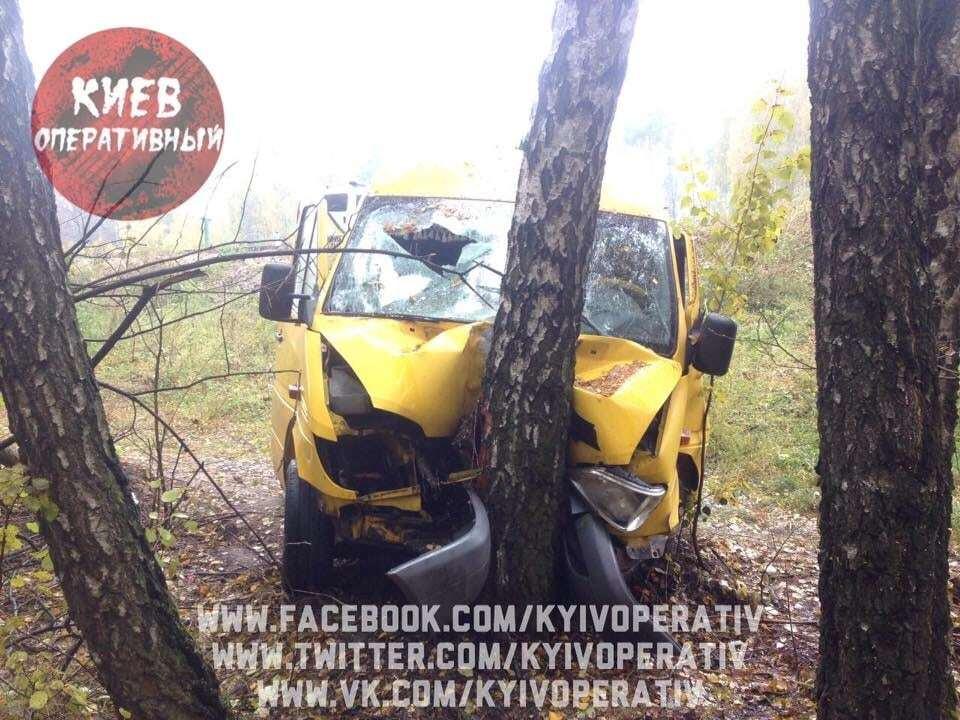 Под Киевом маршрутка слетела в кювет: пострадали 11 человек
