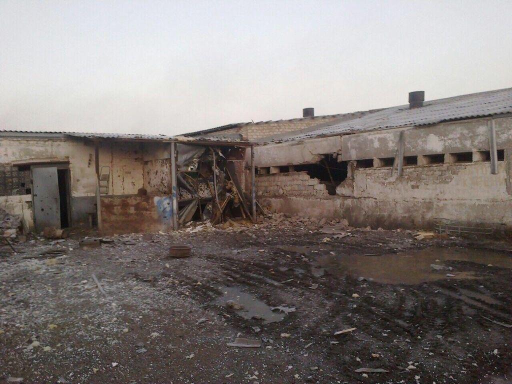 """""""Тварюки вже зі свинями воюють"""": Аброськіна розлютила атака терористів на Агроферму"""
