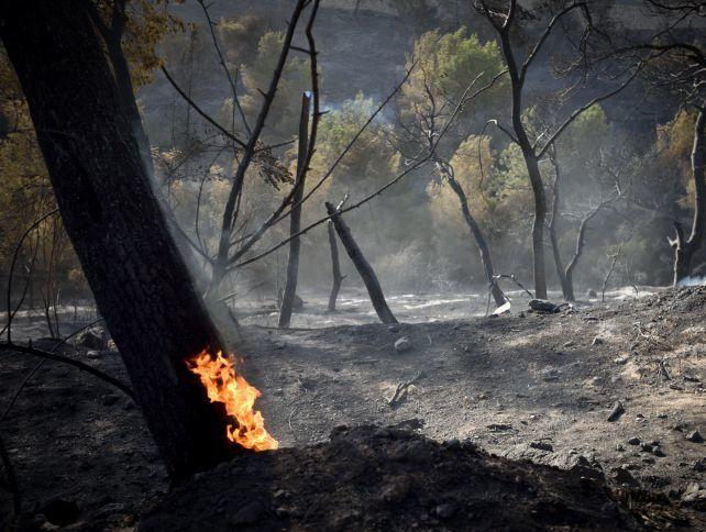 Вогняний терор в Ізраїлі: моторошні фото наслідків