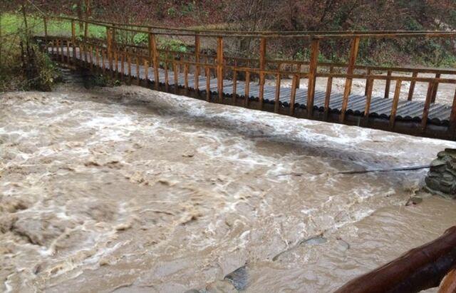 Річки виходять з берегів: на Закарпаття насувається потужний паводок