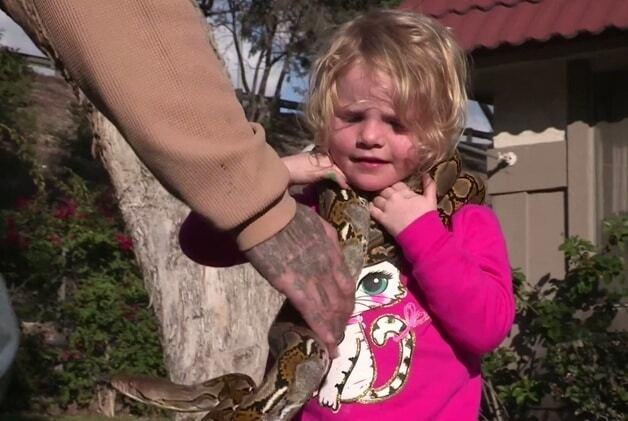 Головне, без бліх: батько приніс додому для дітей страшних вихованців. Опубліковані фото і відео