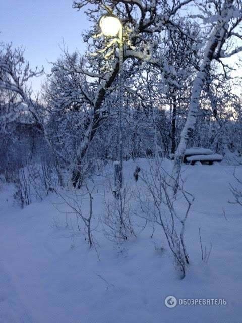 Исповедь эмигрантки: как живется украинке в Норвегии