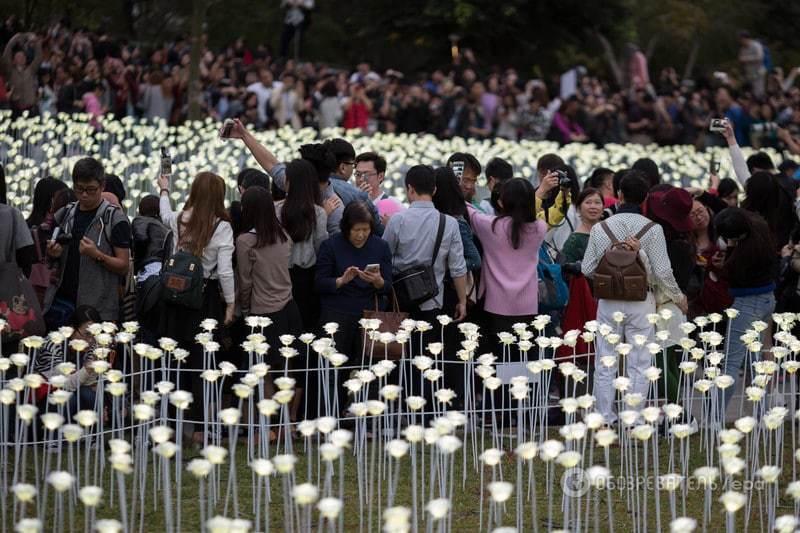 У Гонконзі на День Валентина запалили тисячі світлодіодних троянд: чарівні фото