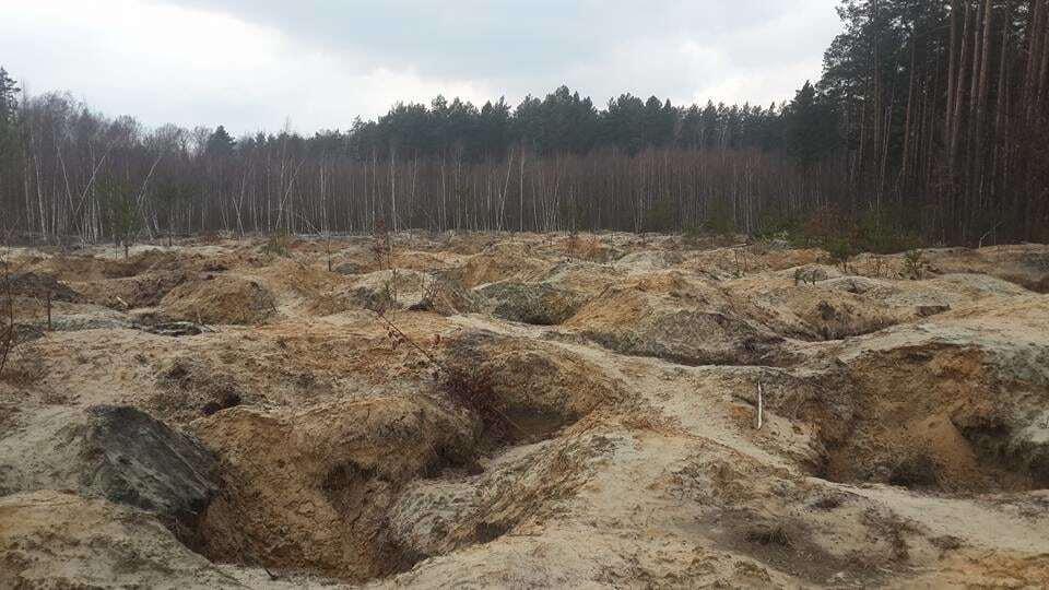 Янтарная лихорадка: в сети показали масштабы нелегальной добычи камня