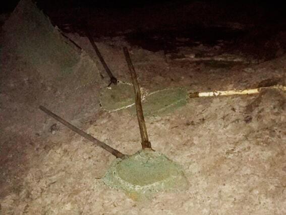 В Житомирской области задержали группу копателей янтаря