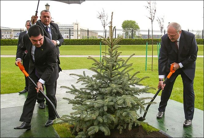 Лукашенко разом із президентом Туркменістану поливав ялинку під дощем