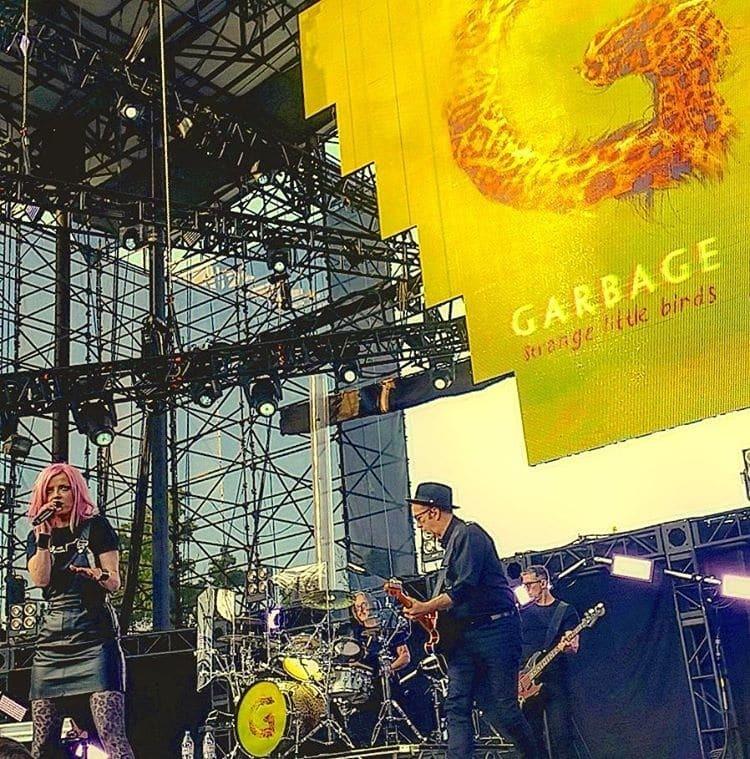 Солістка відомої рок-групи впала зі сцени