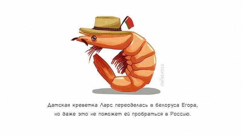 Как клубника и сыр страдают от санкций в России: опубликованы забавные открытки