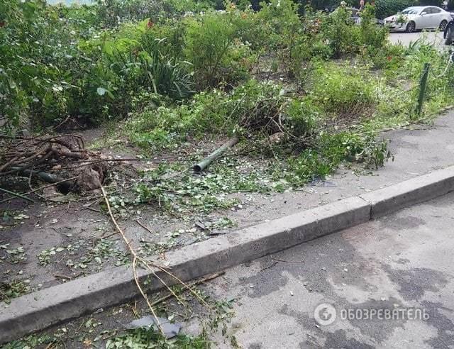 ДТП с пьяным судьей в Киеве: очевидцы рассказали подробности