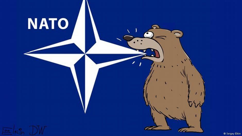 Зубки заслабкі: карикатурист показав атаку російського ведмедя на НАТО