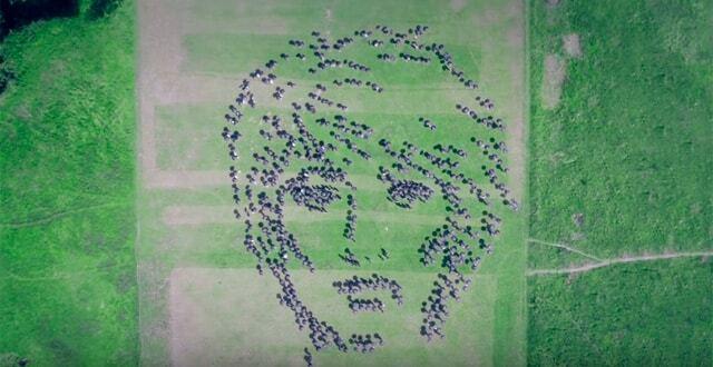 Поклонники Земфиры в честь ее 40-летия создали живой портрет певицы