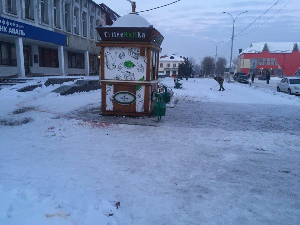 """""""Янтарная"""" бойня на Житомирщине: в полиции рассказали подробности"""