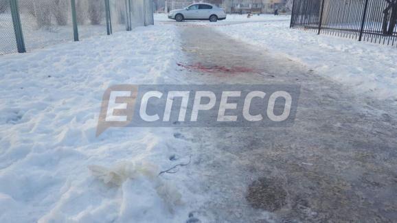 Прямо посреди улицы: в Киеве убили девушку