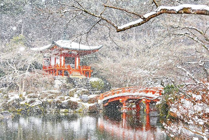 Небывалый снегопад превратил японский Киото в зимнюю сказку