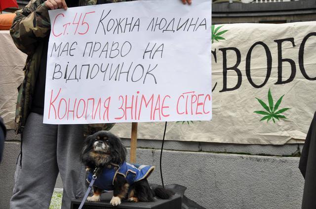 """""""Трава може рятувати"""": у Києві пройшов """"Конопляний марш"""""""