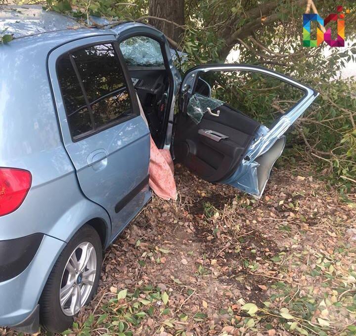 Автомобиль врезался в дерево