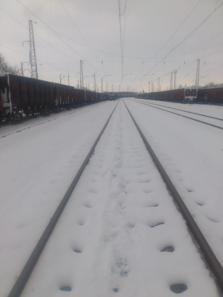 Мир свиней. Что происходит на ж/д станциях в Донецке