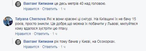 """""""Б*ндеры не всех съели"""": журналист высмеял топ-фейк КремльТВ об Украине"""