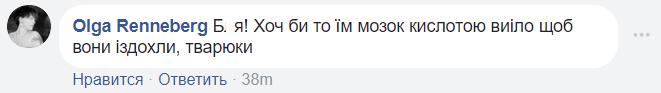 """Кислотой мозг выело: подготовка к Новому году в """"ДНР"""" шокировала сеть"""