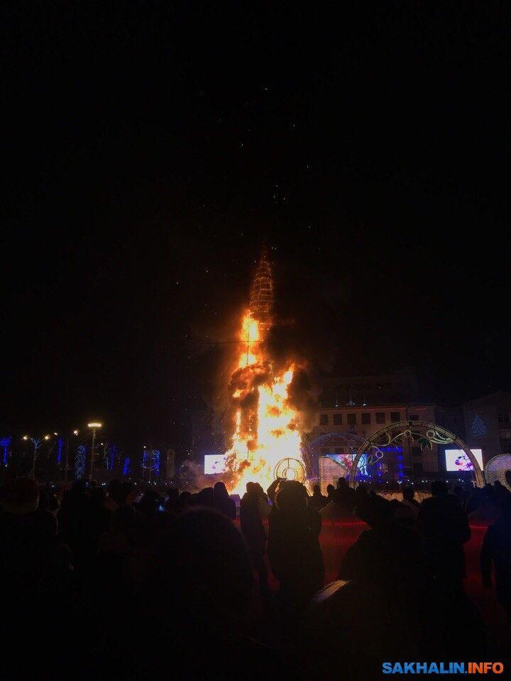Раз, два, три...! На Сахалине случайно сожгли 25-метровую новогоднюю елку