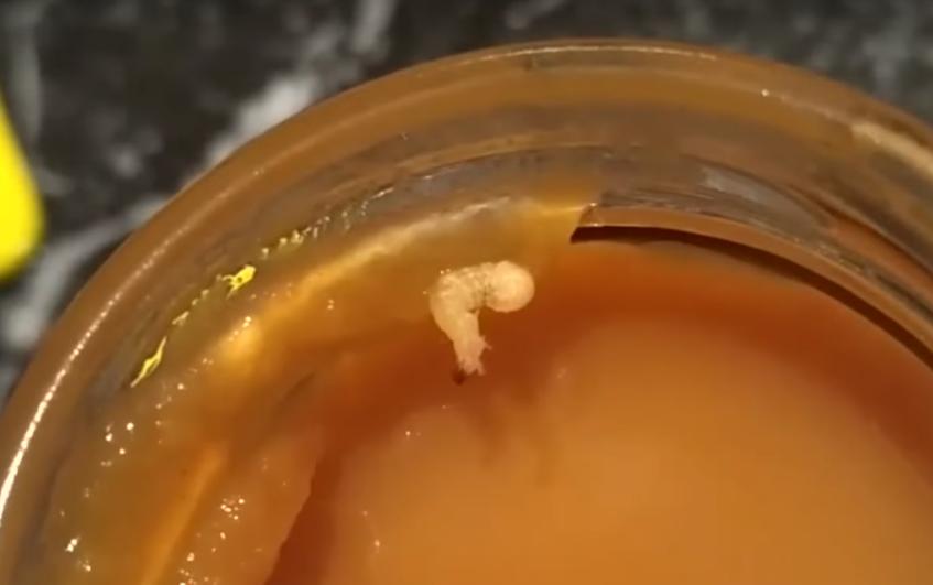 червяк в детском питании
