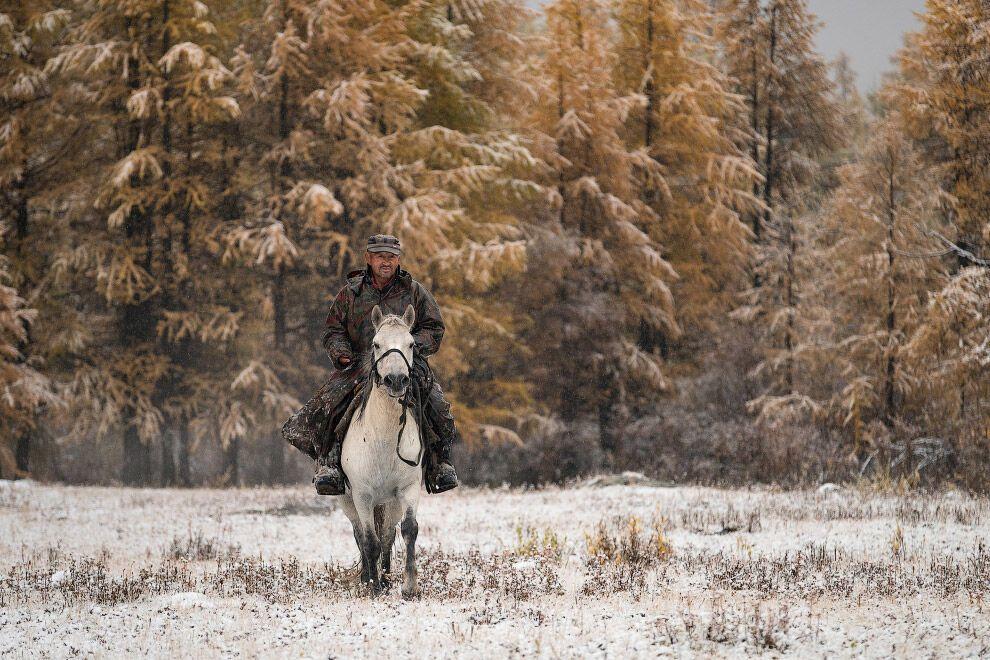Як живе сім'я оленярів високо в горах Монголії