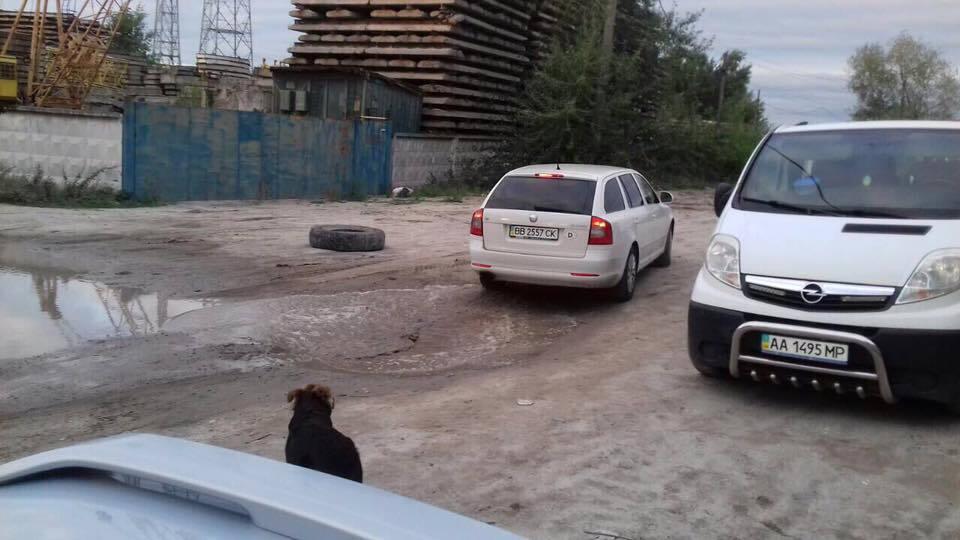 """Незаконний видобуток піску в Києві: в соцмережі повідомили про """"розборки в стилі 90-х"""""""