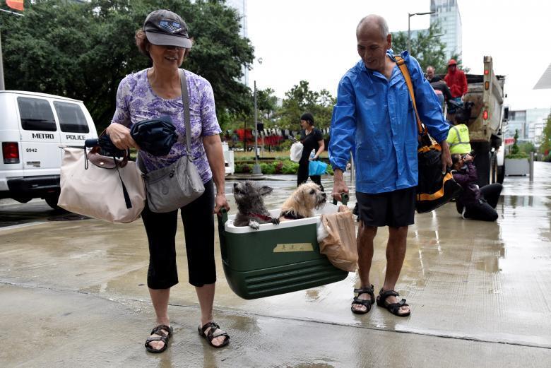 Пара разом зі своїм улюбленцями йде в евакуаційний центр