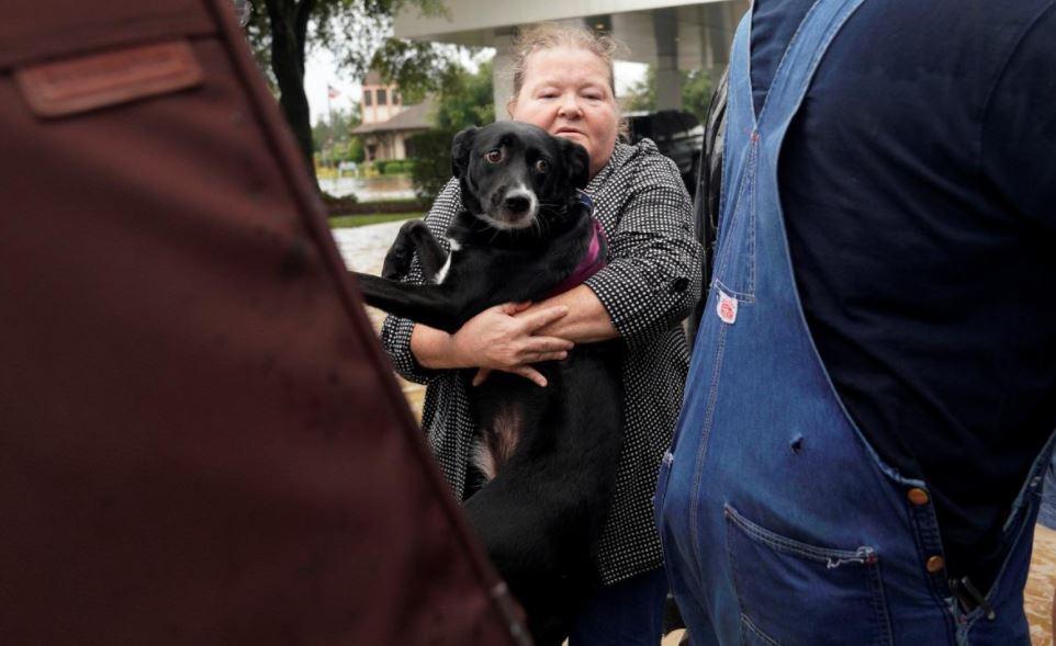 Жінка намагається затягнути свого пса у військову вантажівку, щоб залиишити місто Дікінсон