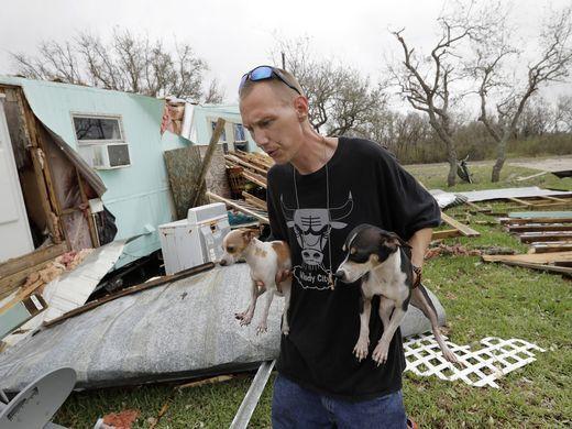 Чоловік разом зі своїми собаками повернувся подивитися на зруйнований будинок після урагану