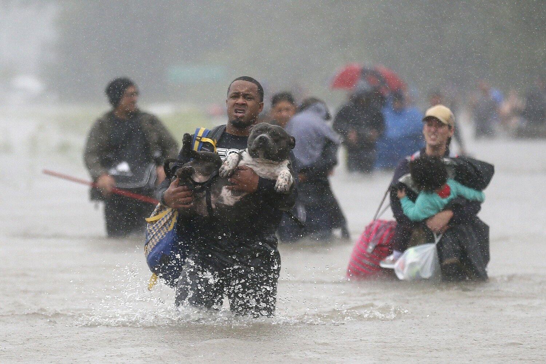Ісайя Кортні на затопленій вулиці Хьюстона. Він несе свого улюбленця пса Брюса