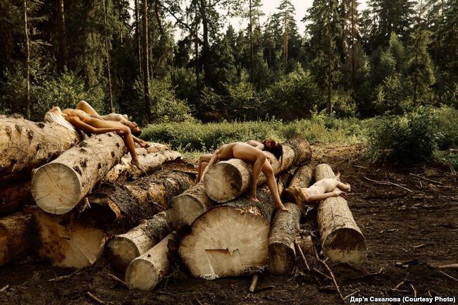 Фото голых девушек в лесу 98666 фотография
