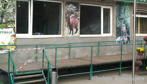 Под Харьковом обезьяны оторвали ухо ипальцы работнику зоопарка