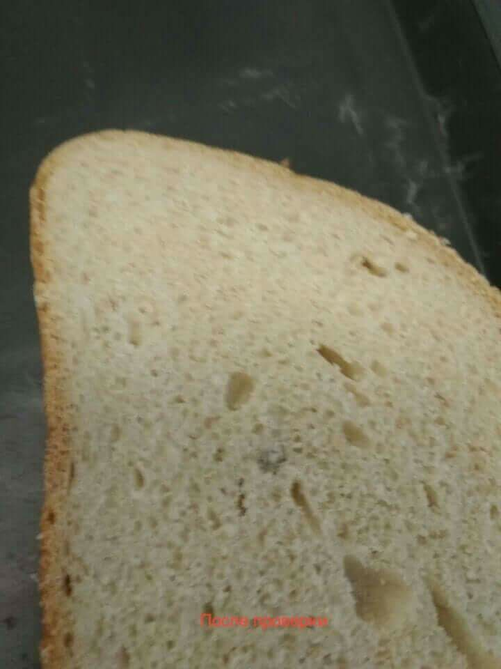 """""""Плесень не уехала"""": курсант ВМС показал ужасающие фото обеда в институте"""