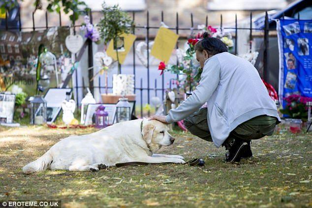 Лабрадор Джорджа Майкла стал «новым Хатико», ожидая владельца  намемориале