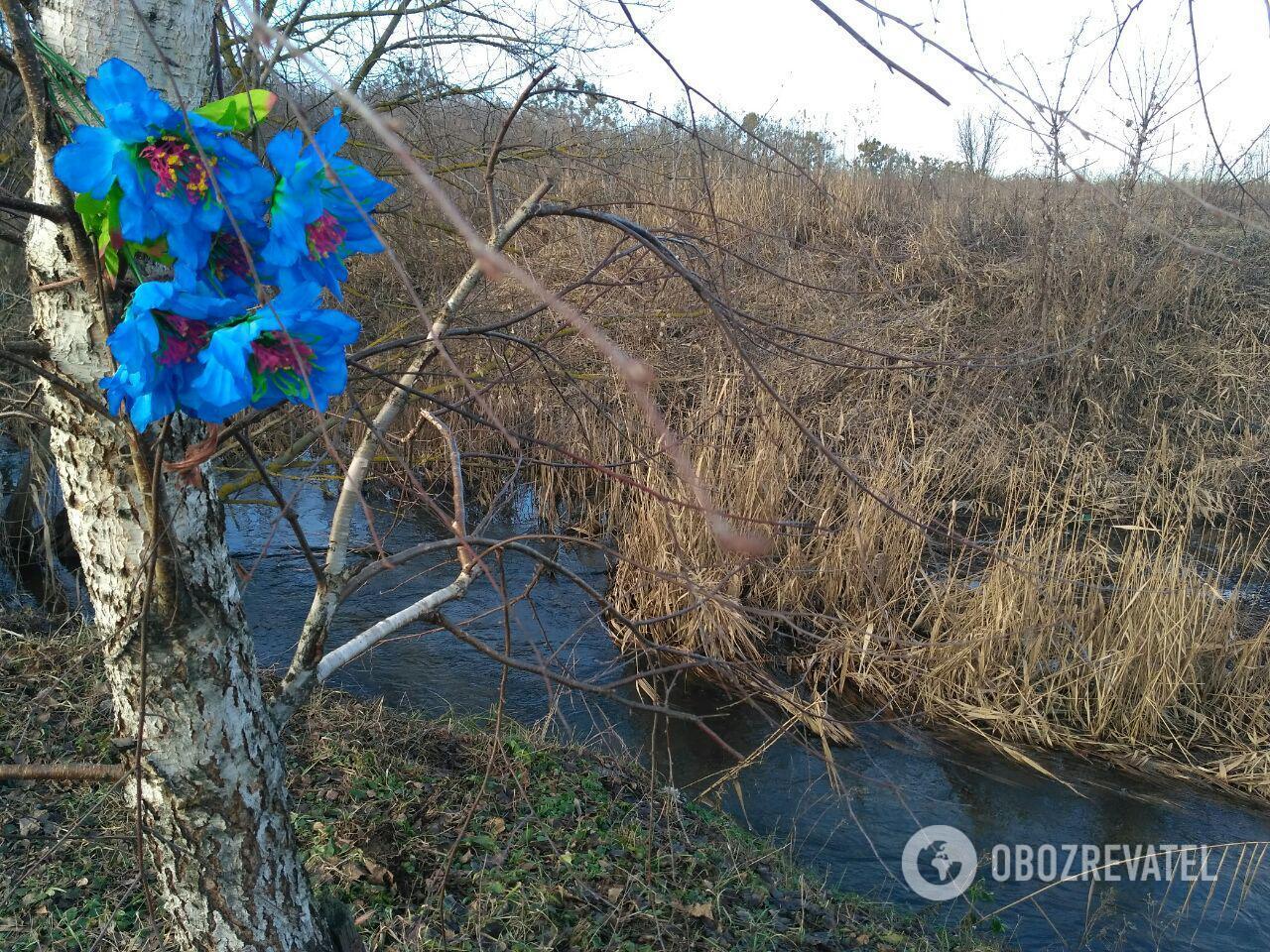 Местность, где нашли тело Ноздровской