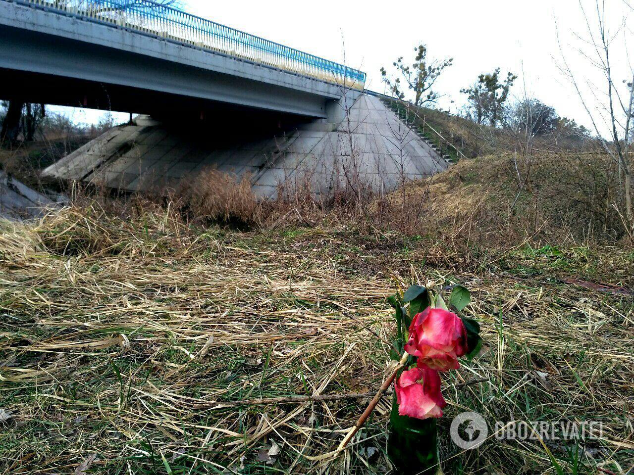 Мост через реку Козка возле села Демидов