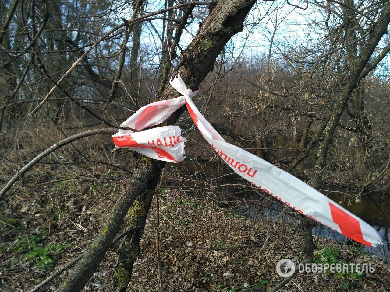 Место, где нашли тело Ирины Ноздровской