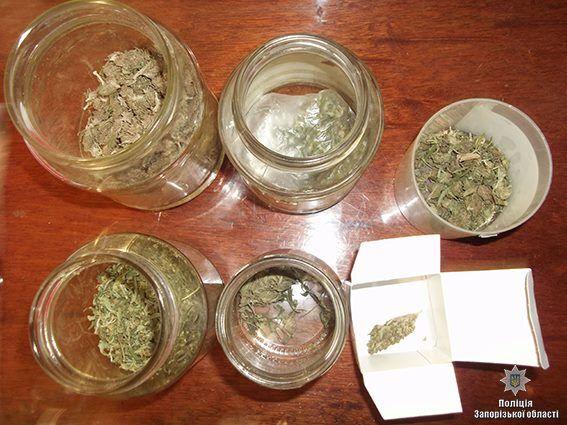 В Запорожской области пенсионер хранил наркотики и боеприпасы (ФОТО)