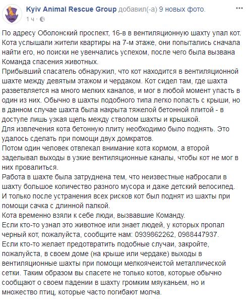 Доставали сачком: в Киеве жителей напугали странные звуки из шахты дома