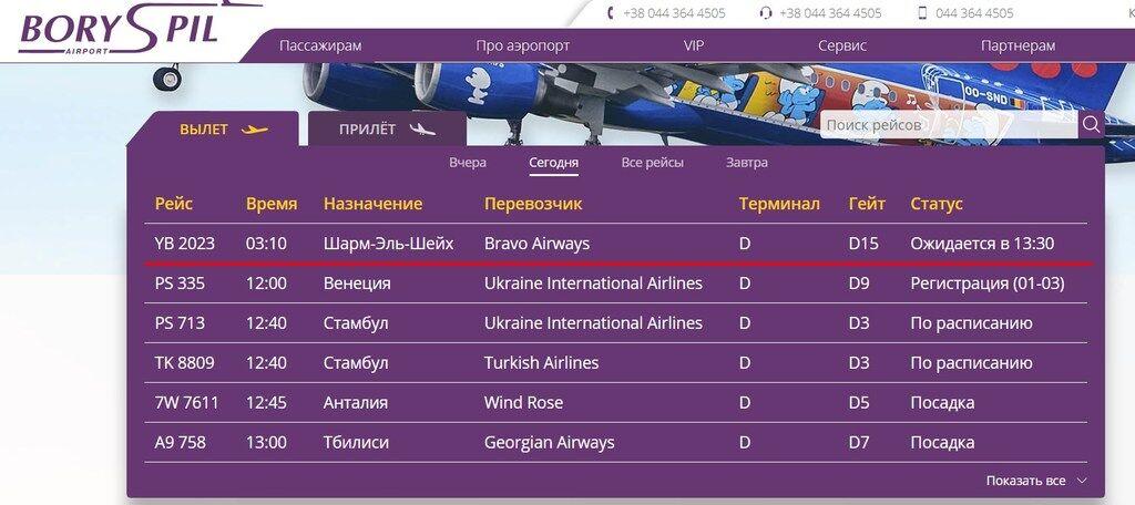"""В аеропорту """"Бориспіль"""" застрягли сотні пасажирів"""